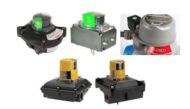 limit switches reva