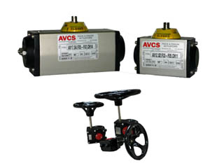 AVCS  ACTUATOR GROUP PIC_320x240