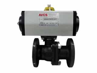 AVCS 1.5 B41C 150# BV SR ACT_320X240