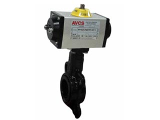 AVCS 2 050-579 DA ACT_320x240