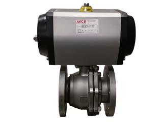 AVCS 4 B41C 6666-SR_320X240